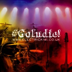 GoIndie - The advantages of being an independent musician