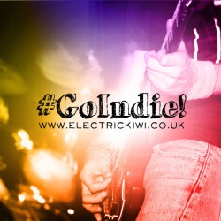GoIndie - The Challenges of Being an Independent Musician