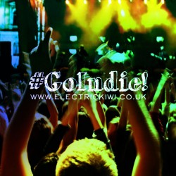 go indie - advice from independent musicians