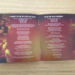 Tyler Hilton - Indian Summer - Print - Booklet