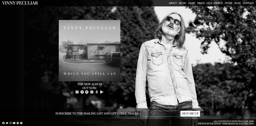 Web Design for Singer/Songwriter Vinny Peculiar